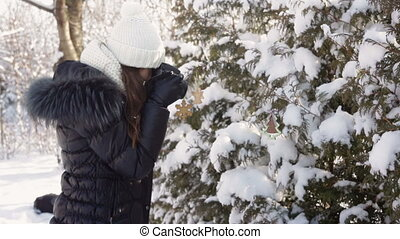 Beautiful young woman in winter