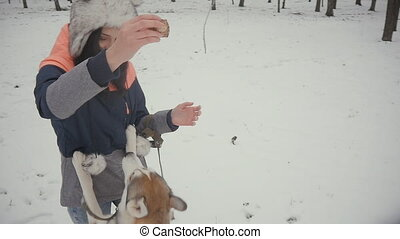 beautiful young woman playing with a dog in a winter snowy park