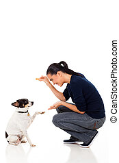 young woman training her dog - beautiful young woman...