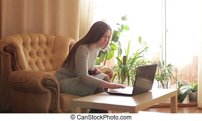 Beautiful young woman using a laptop for social networking in room.