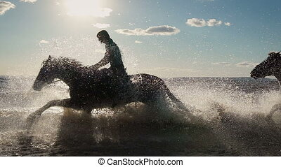 Beautiful young women horse riding at a beach. Enjoying...