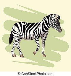 Beautiful zebra drawing
