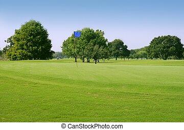 beautigul, golfe verde, capim, desporto, campos