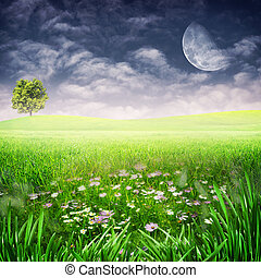 Beauty evening on the meadow. Abstract natural backgrounds for your design