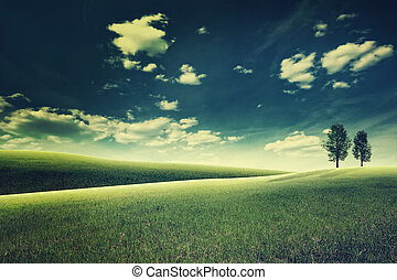 Beauty evening on the meadow. Abstract natural landscape