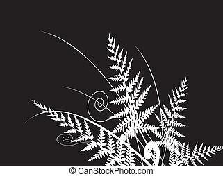 beauty fern dark background
