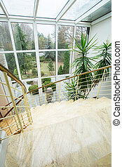 Beauty garden - view from the window