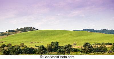 Beauty green hills in Pieniny near Cerveny Klastor -...