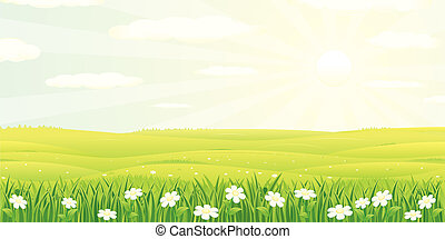 Beauty Landscape - Beauty Summer or Spring Landscape, vector...