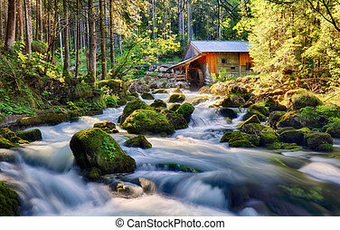 Beauty landscape with river and forest in Austria, Golling