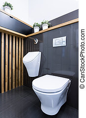Beauty luxury toilet interior