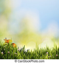 Beauty natural backgrounds with mushrooms and butterfly