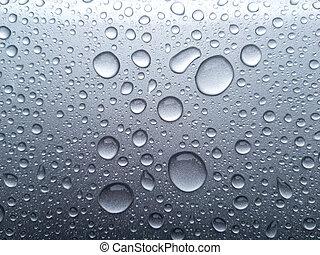Beauty of the rain drops.