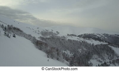 Beauty of wildlife on snowy day. Aerial view of winter mountains covered with pine trees. Low Flight over snowy forest on a mountain slope.