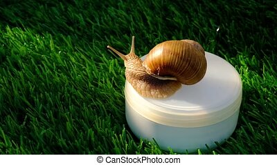 beauty skin care cosmetics with snail mucin, moisturizer cream with snail on green grass .High quality 4k footage