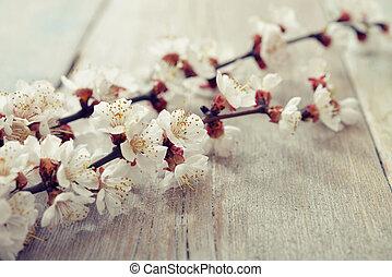 beautyful, flor, ramo