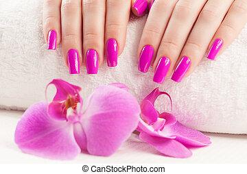 beautyful, manicure, con, fragrante, orchidea, e, towel.