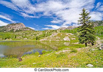 Beaver Lagoon in the San Juan Mountains in Colorado