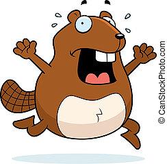 Beaver Panic - A cartoon beaver running in a panic.