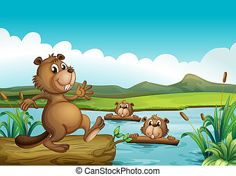 Beavers playing in the river with woods - Illustration of...