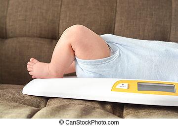 bebé, aumento, niño, escalas