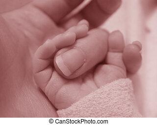 bebé, dedo, tenencia