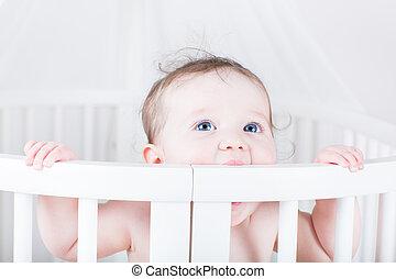 bebé, divertido, poco, pesebre, morder