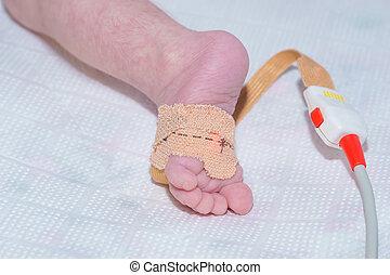 bebé, hospital, pulso, recién nacido, niños, pie, oximeter, sensor