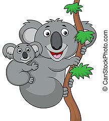 bebé, koala, madre