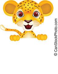 bebé, leopardo, con, muestra en blanco