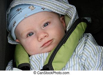 bebé, lindo, poco, boy., retrato