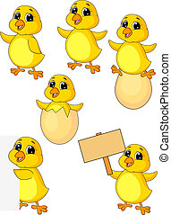 bebé, lindo, pollo, conjunto, caricatura