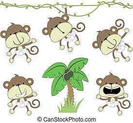 bebé, monos
