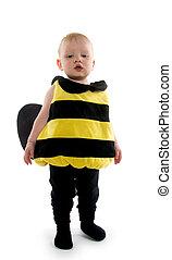 bebé, niño, abejorro, disfraz