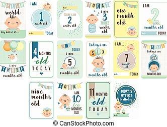 bebé, niño, semanas, y, meses, tarjeta