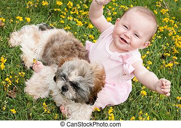 bebé, perrito, feliz