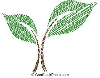 bebé, planta de semillero, sketched