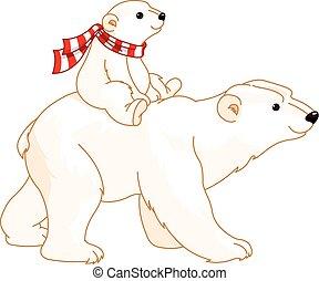 bebé, polar, mamá, oso