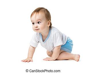 bebé que arrastra, con, curiosidad