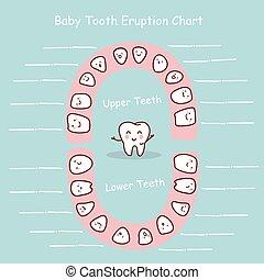 bebé, registro, gráfico, diente