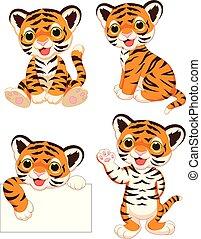 bebé, tigres, conjunto, caricatura, colección
