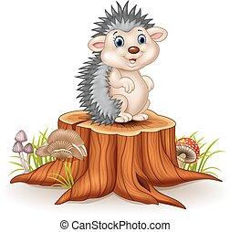 bebê, adorável, ouriço, sentando