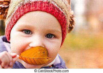 bebê bonito, retrato, ao ar livre, contra, outono, natureza