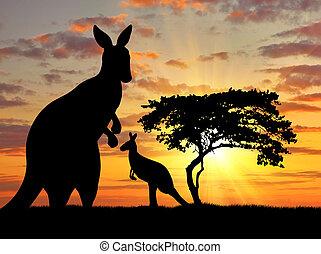 bebê, canguru, silueta