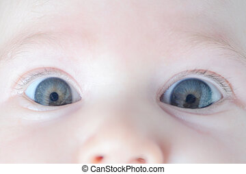 bebê, close-up, pequeno, rosto