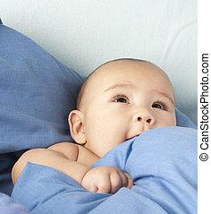 bebê, coberto, com, um, cobertor azul