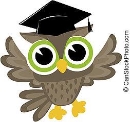 bebê, coruja, graduado, caricatura