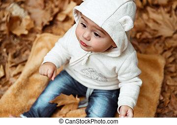 bebê, doce, outono, parque