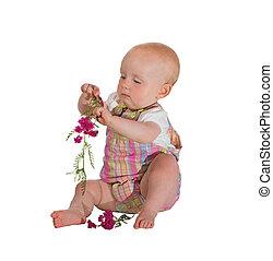 bebê, flores, jovem, bonito, tocando
