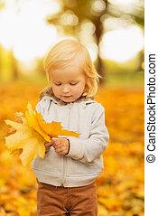 bebê, folhas, caído, segurando